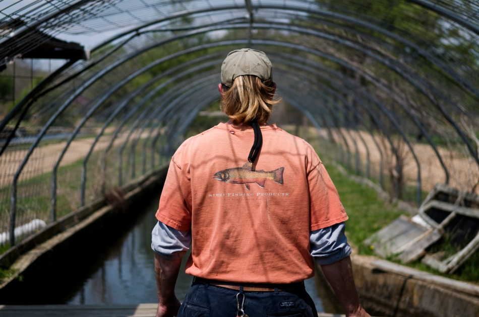 Tom Schlueter feeds the fish at Westover Farms
